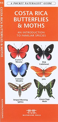 Costa Rica Butterflies & Moths By Kavanagh, James/ Leung, Raymond (ILT)